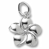 14K White Gold Plumeria Flower Charm by Rembrandt Charms