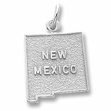 14K White Gold New Mexico Charm by Rembrandt Charms