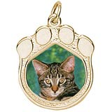 Gold Plated Pet Paw Print PhotoArt® Charm by Rembrandt Charms