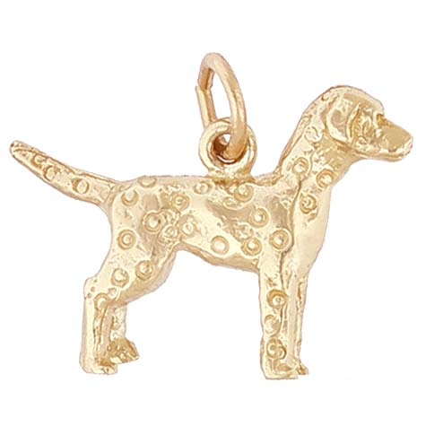 14K Gold Dalmatian Charm by Rembrandt Charms