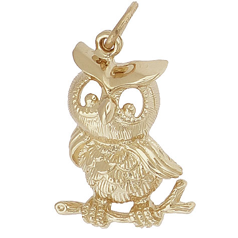 14K Gold Horned Owl Charm by Rembrandt Charms