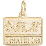 Gold Plated Triathlon Charm by Rembrandt Charms