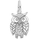 14K White Gold Wise Owl Charm