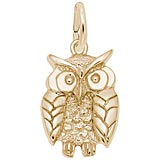 Gold Plate Wise Owl Charm
