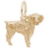 Gold Plate Boykin Spaniel Dog Charm
