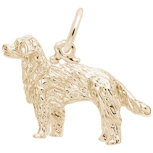 Gold Plate Golden Retriever Dog Charm by Rembrandt Charms
