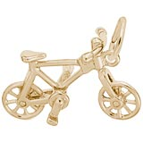Rembrandt Bicycle Charm, Gold Plate