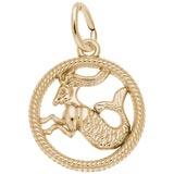 10k Gold Capricorn Zodiac Charm by Rembrandt Charms