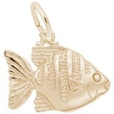 10K Gold Angelfish Charm by Rembrandt Charms