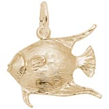 Gold Plate Angelfish Charm by Rembrandt Charms