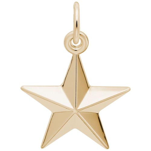 14K Gold Star Charm by Rembrandt Charms