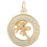 Gold Plate SM Grand Cayman Palm Tree Charm by Rembrandt Charms