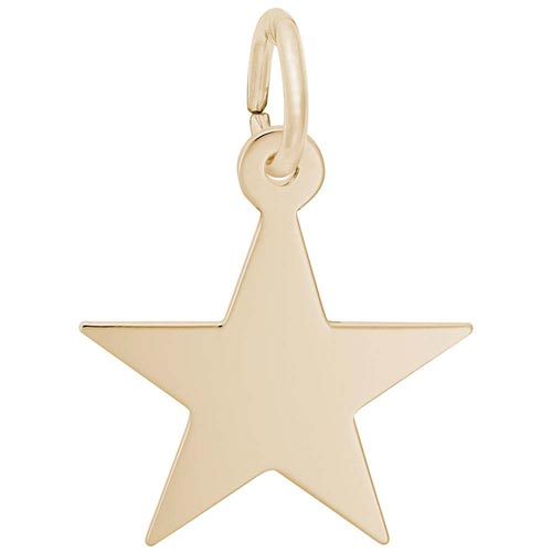 14K Gold Star Charm Series 50 by Rembrandt Charms