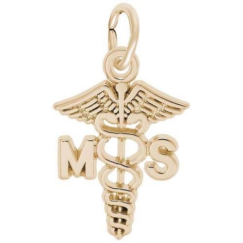 Gold Plate Medical Secretary Caduceus by Rembrandt Charms