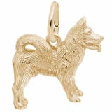 Gold Plate Akita Charm by Rembrandt Charms