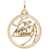 Gold Plate Miami Faceted Charm by Rembrandt Charms