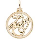 Gold Plate Tampa Faceted Charm by Rembrandt Charms
