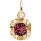 14K Gold Petite Birthstone - 06 Jun