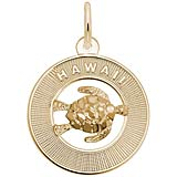 14K Gold Hawaii and Turtle
